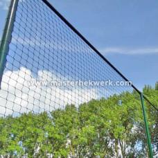 Ballenvanger Net
